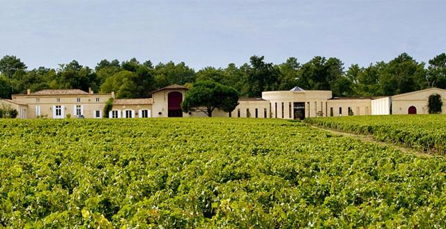 Bildresultat för Domaine de Chevalier